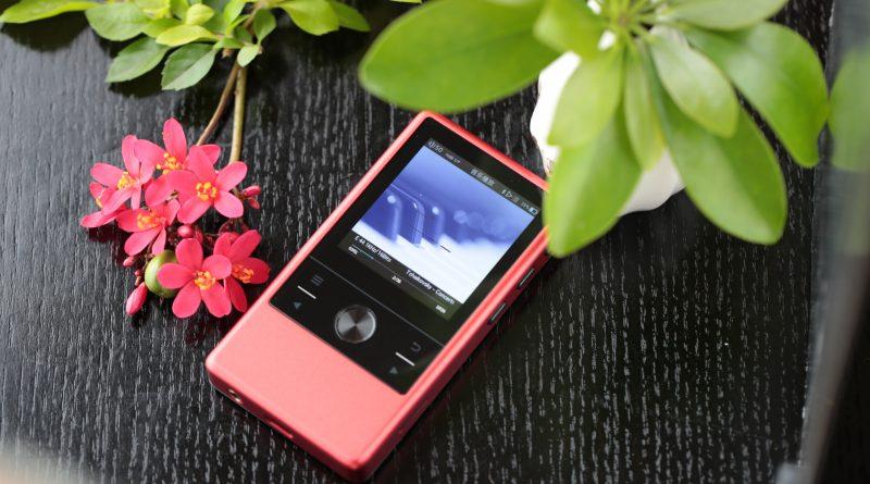 Cayin N3 紅色