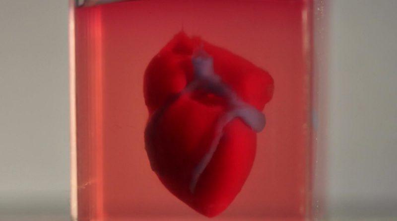 3D 打印新境界: 利用細胞製造心臟